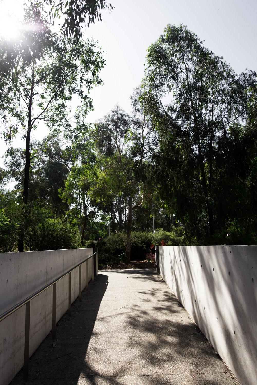 Lean+Timms+Canberra+D8.jpg
