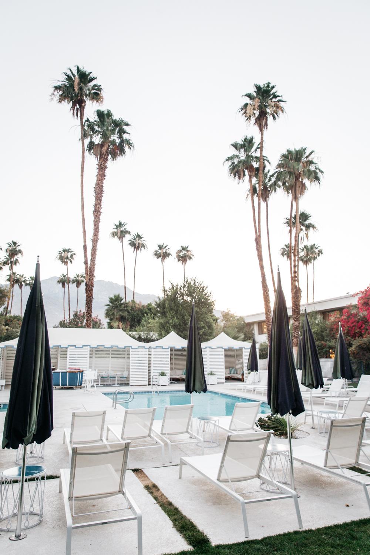 Parker Palm Springs Lean Timms LR75.jpg
