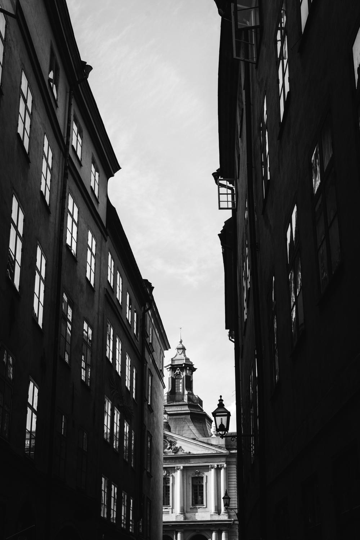 Stockholm LEAN TIMMS  (5 of 22).jpg