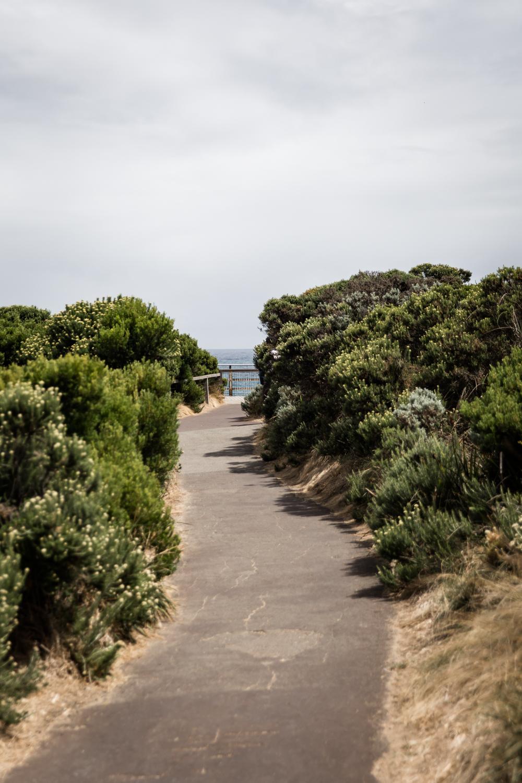 Lean Timms Great Ocean Road  (5 of 17).jpg