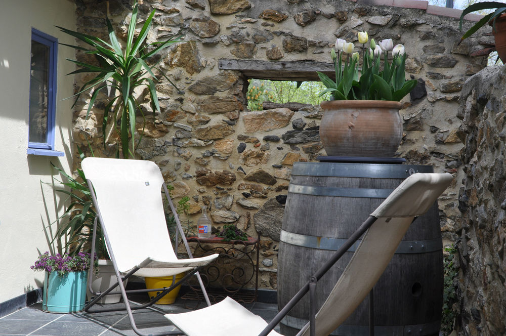 Terrace - Deckchairs.jpg