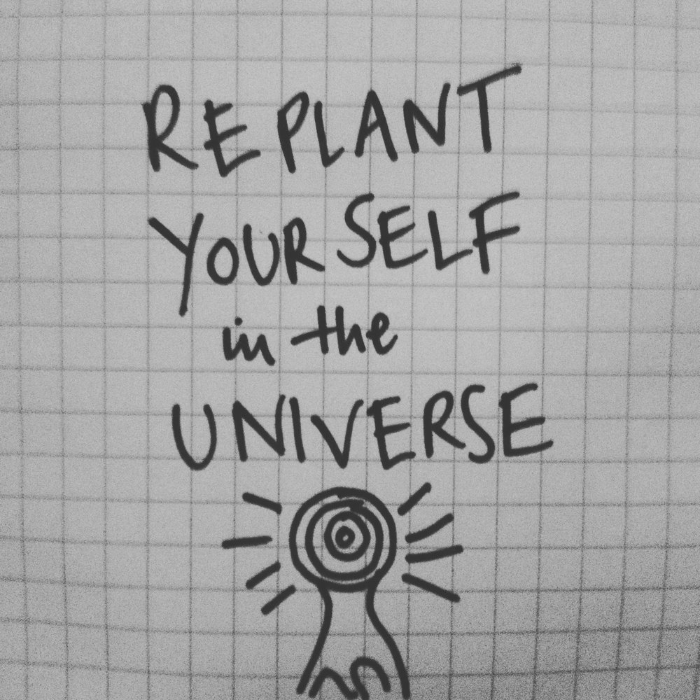Replant yourself in the universe.jpg