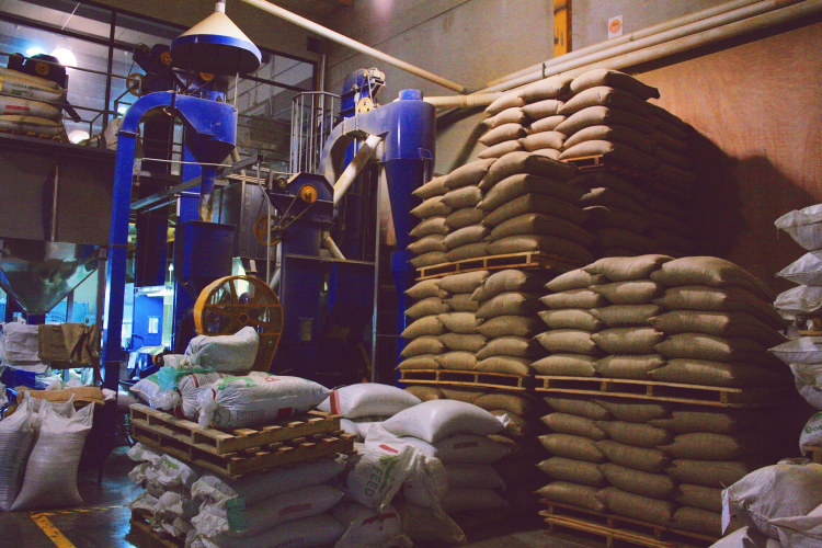 Exclusive Coffee Exporter in San Jose, Costa Rica