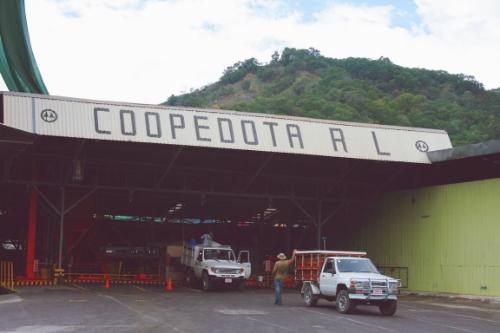 Coop de Dota drop off