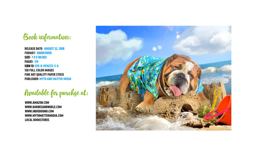 dogs on the beach purchase info flat.jpg