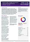 Nexus Global Dynamic A Factsheet