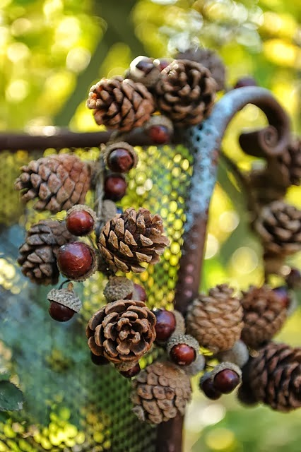 pine+cone+and+acorn+wreath.jpg