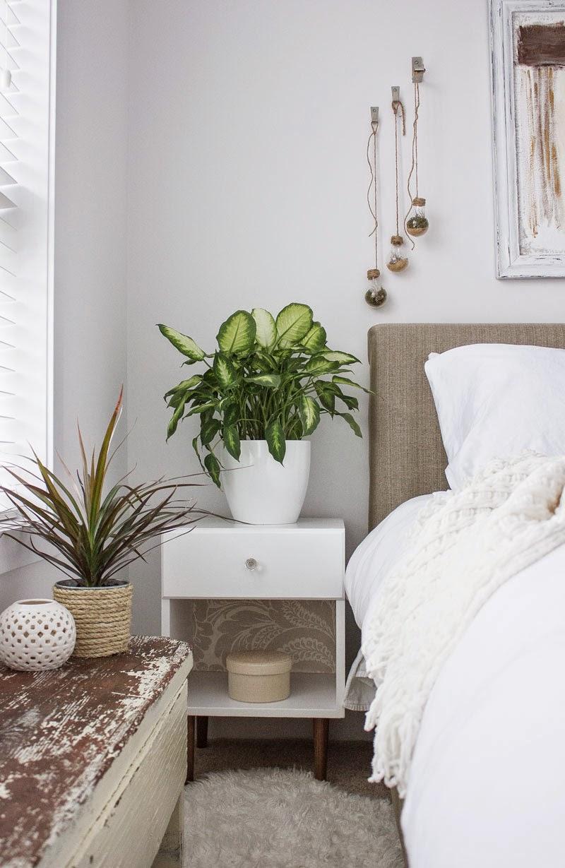 vintage-nightstand-and-plants.jpg