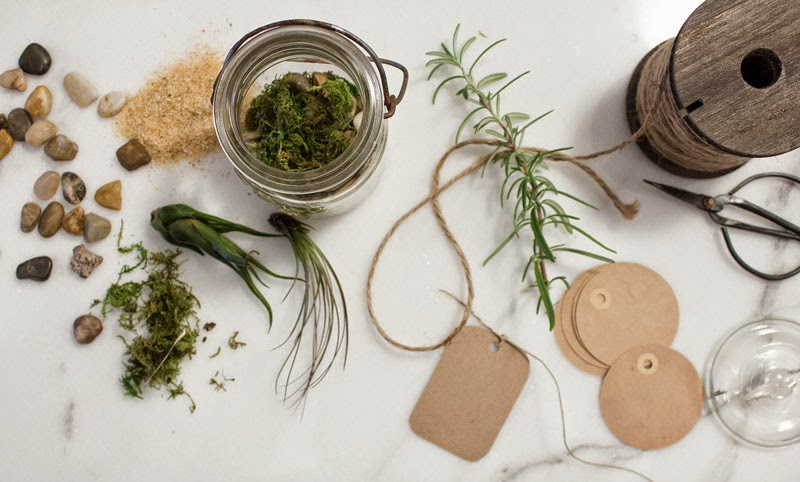 homemade-mason-jar-terrarium.jpg