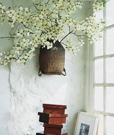 dogwood+on+wall.jpg