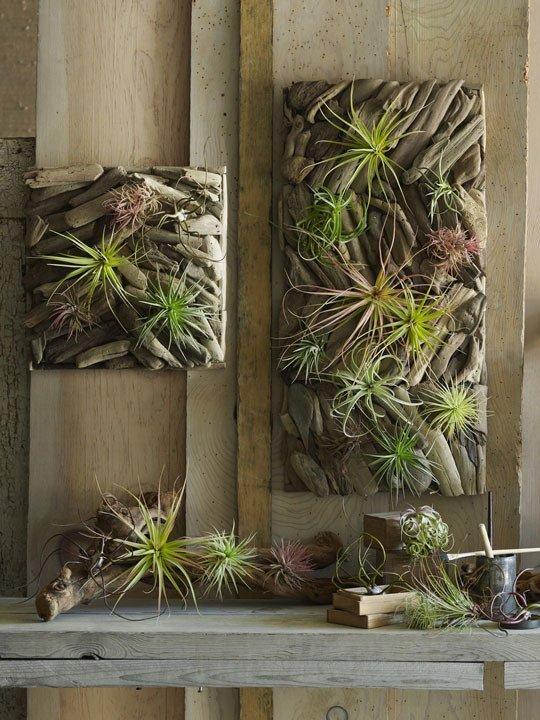 driftwood vertical garden