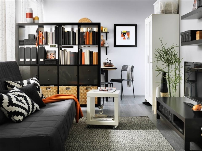 separated entertainment space with tall shelving