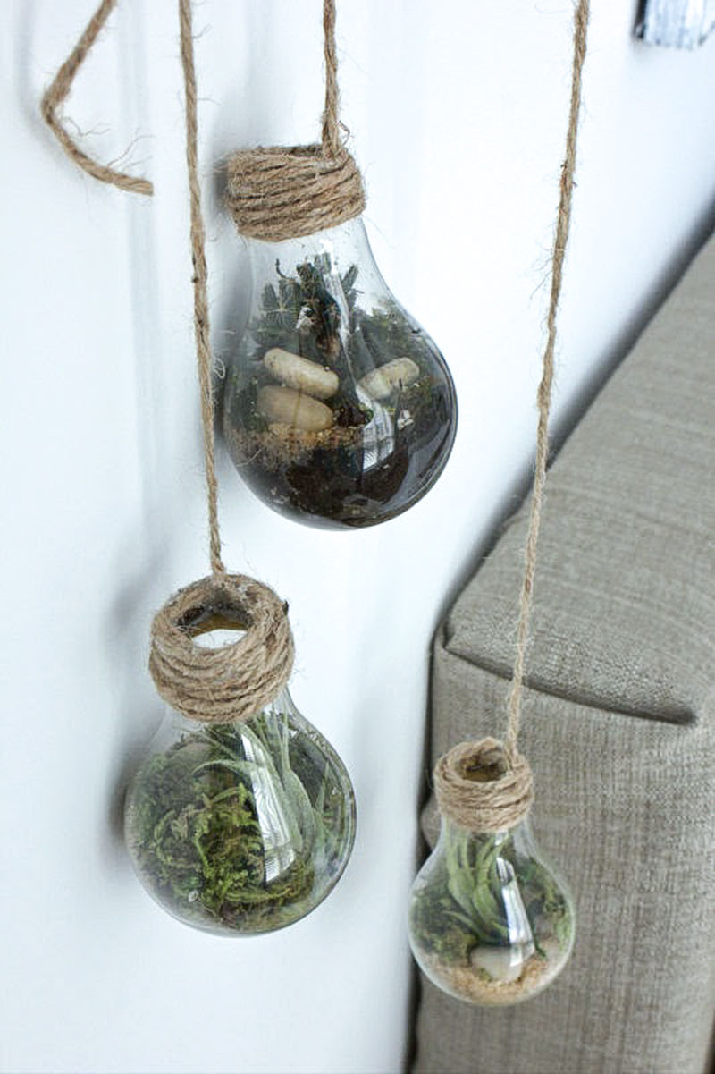 diy lightbulb terrarium refreshed designs. Black Bedroom Furniture Sets. Home Design Ideas