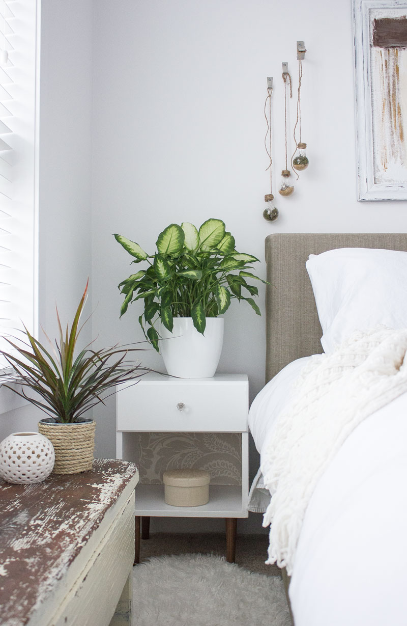 green bedroom with DIY lightbulb terrariums