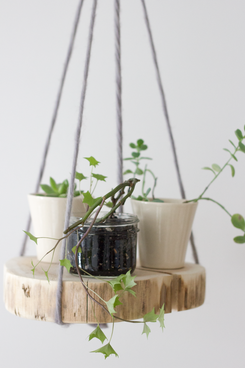 cedar slice plant hanger - click for DIY