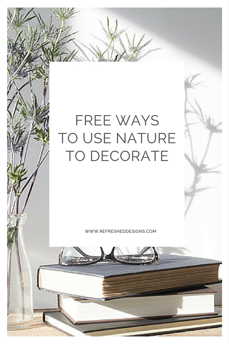 Free Ways to Use Nature to Decorate