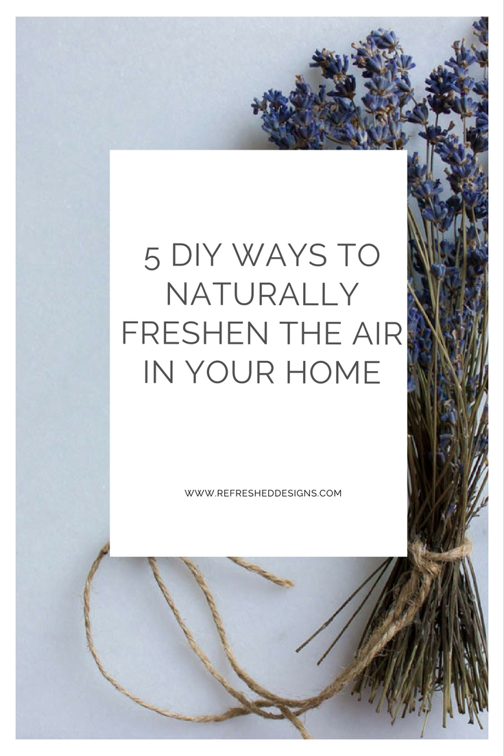5 DIY ways to naturally freshen the air for a healthy home