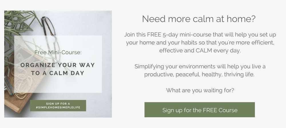 organize your way to calm day course