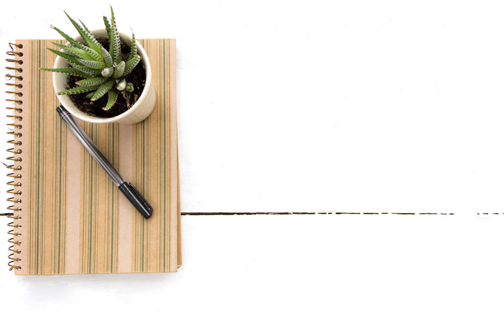 cactus-book-and-pen.jpg