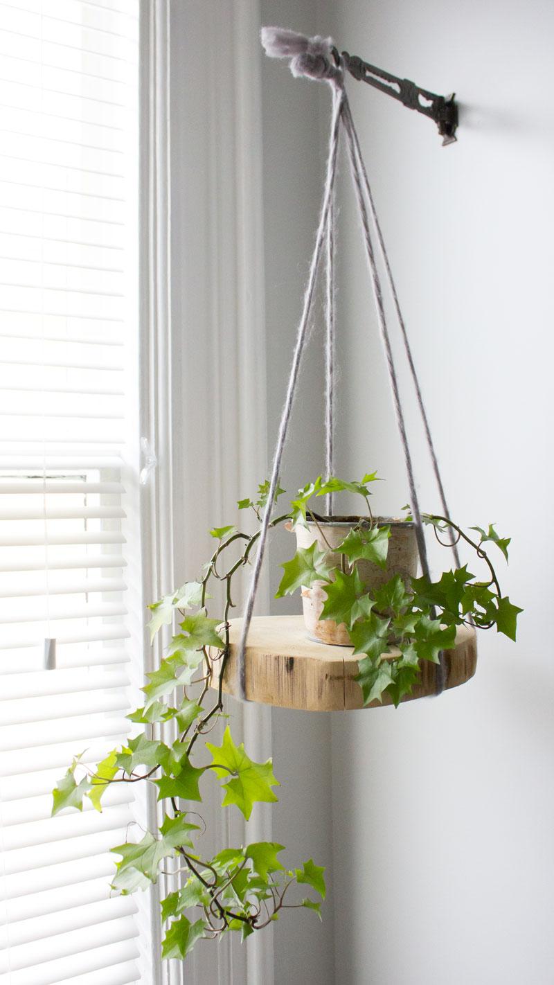 DIY round hanging wood plant shelf