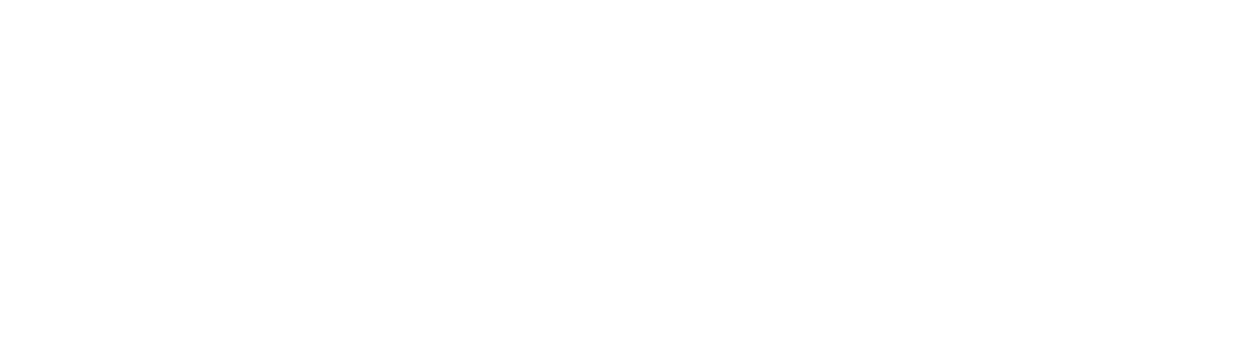 Shoot The Bull