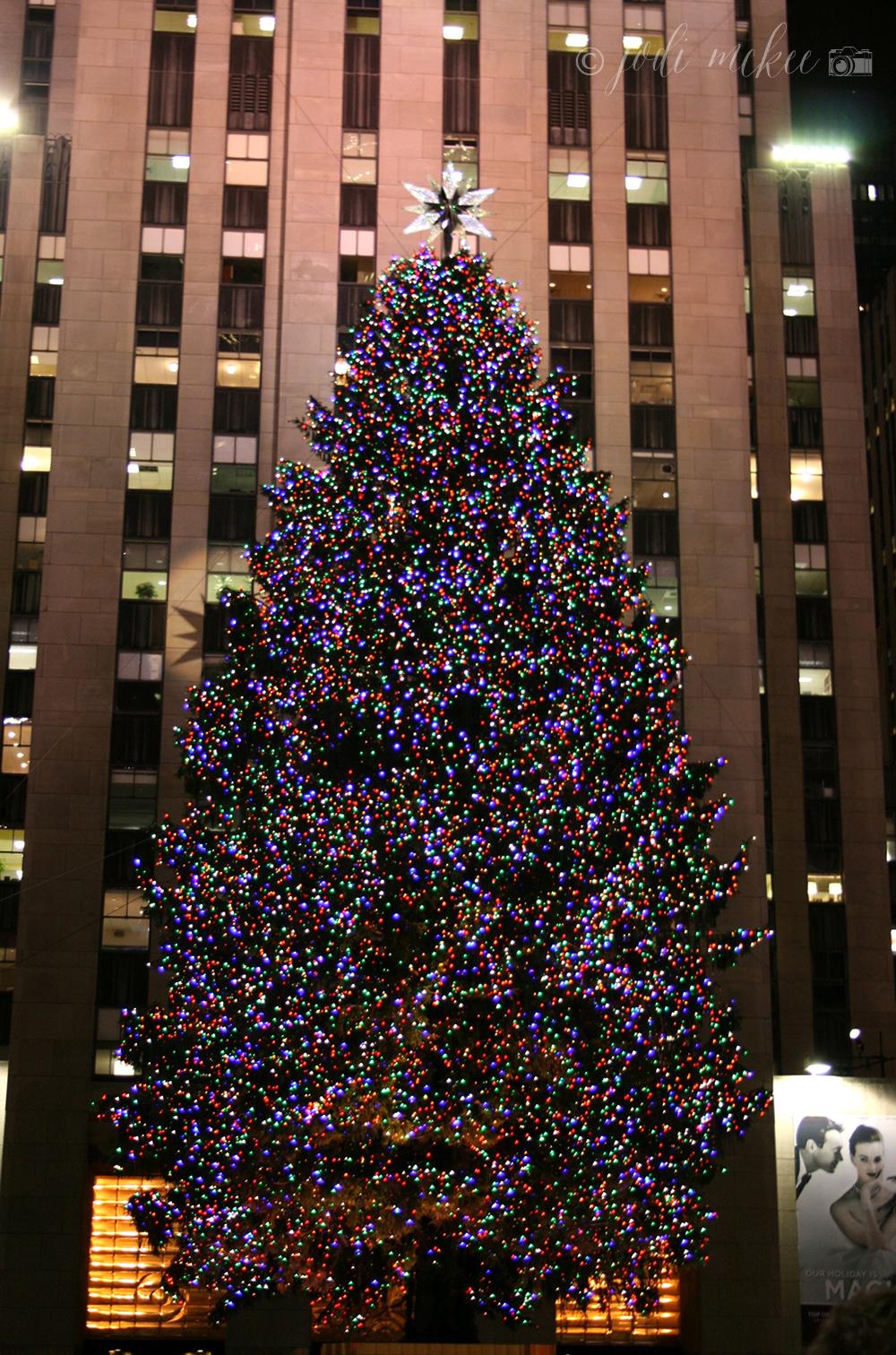 rockefeller center christmas tree, new york city
