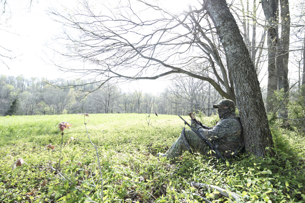 If you start out early enough, it's possible to set up about 40 yards of roosted turkeys.