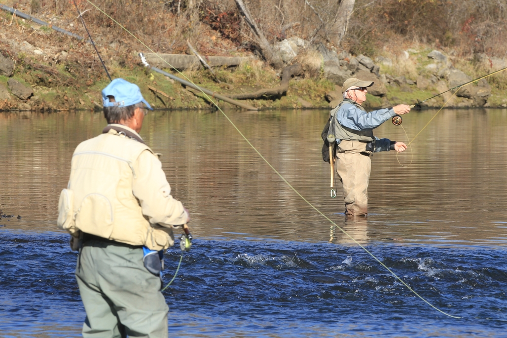 The Norfork River is a tailwater, with Norfork Lake as its source. There are four species of trout in the river, including an abundance of rainbows.