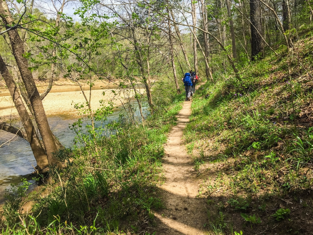 The Buffalo River Trail follows the beloved Buffalo River, the first national river.