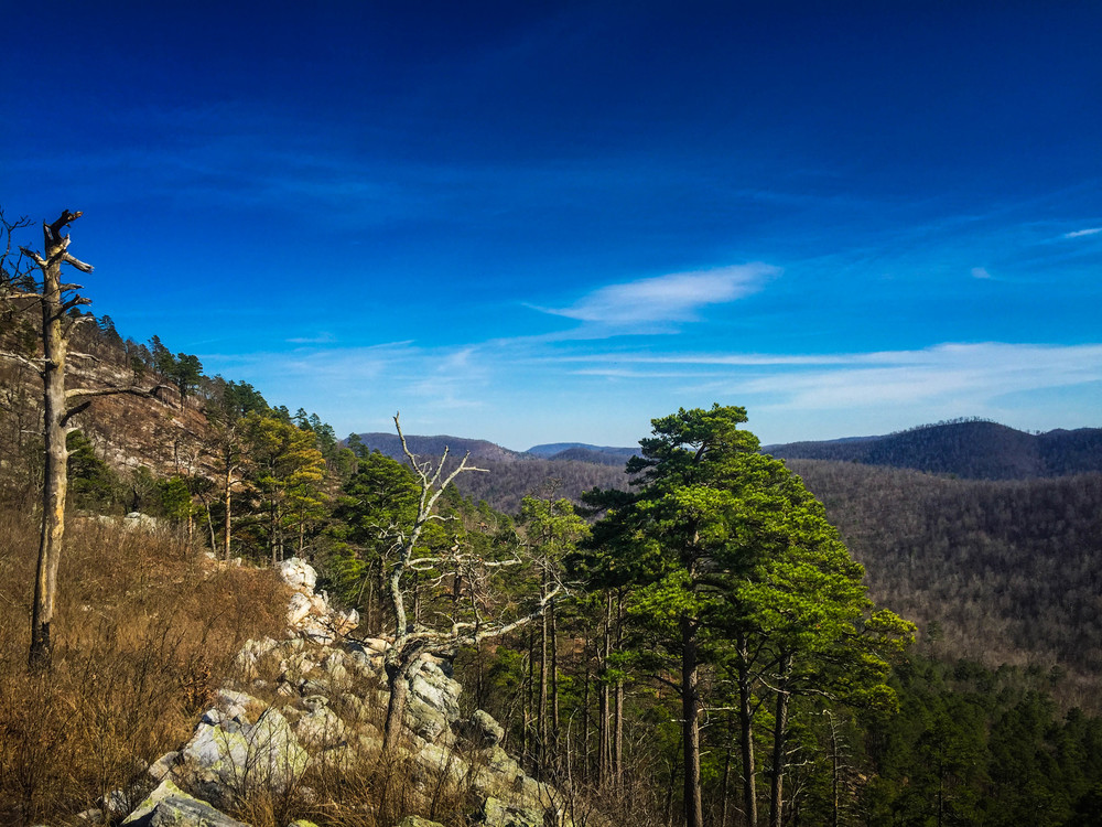 Just up from the Little Missouri Falls is a climb through the pines to some of the best vistas in the Ouachita Mountains.