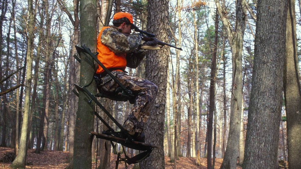 Using a climber stand can allow you to pick the perfect spot to account for wind direction.