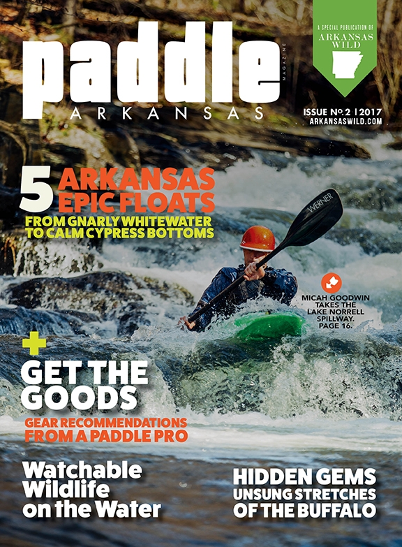 Paddle 2017 Cover.jpg
