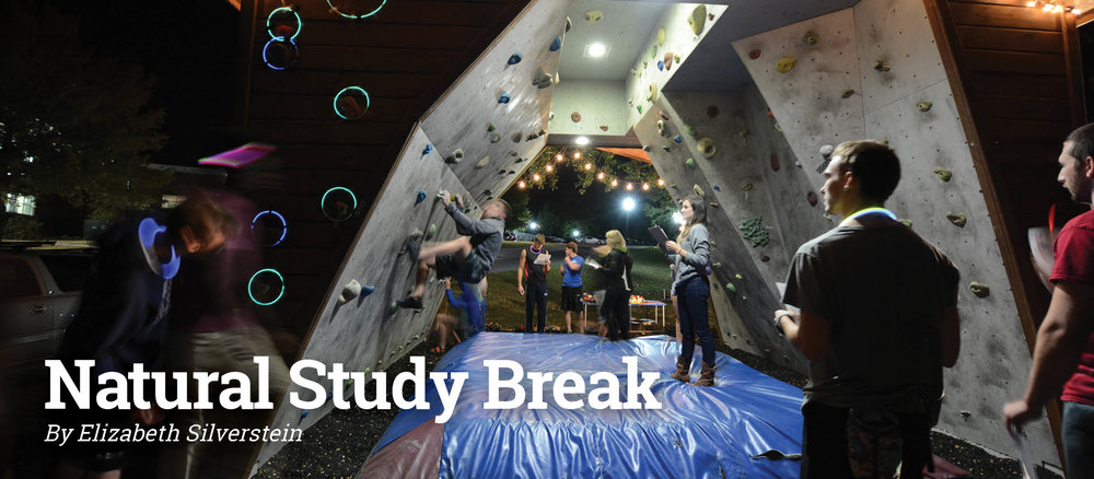 Study Break page.jpg
