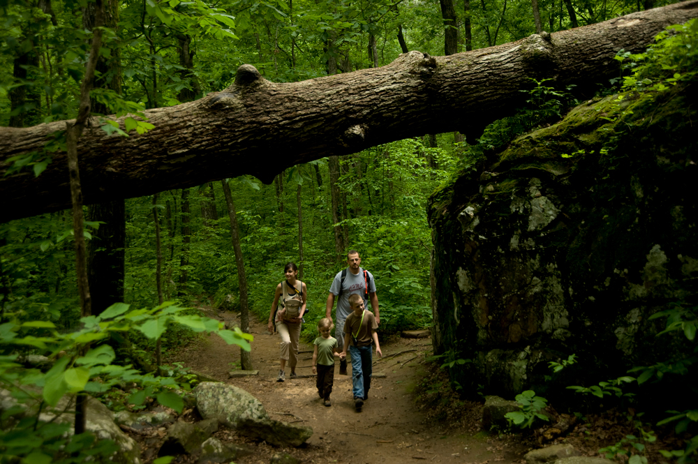 Petit Jean's tranquil forests offer something for all ages to see, making it a natural for families.