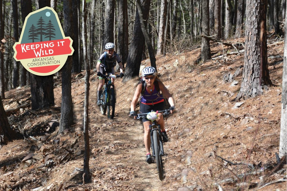 Mountain bikers tackle an Iron Mountain trail. Arkansas is nationally known for its trails systems, providing tourism dollars and quality of life for natives.