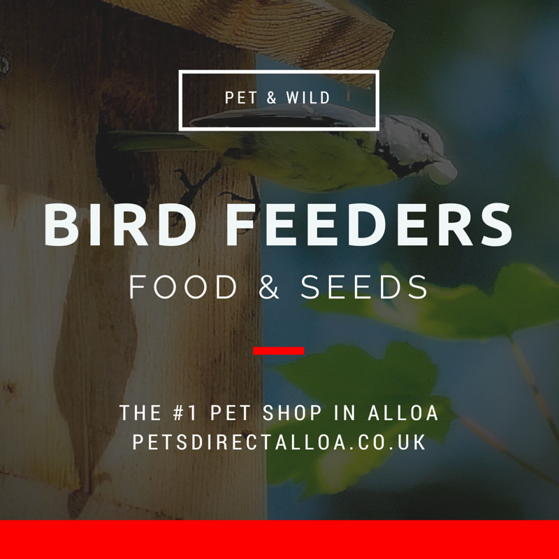 pet-wild-bird-feeders-food-seed-alloa-falkirk-stirling.jpg