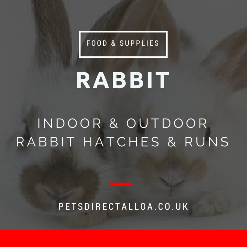 rabbit food-supplies-pet-shop-alloa-falkirk-stirling.jpg