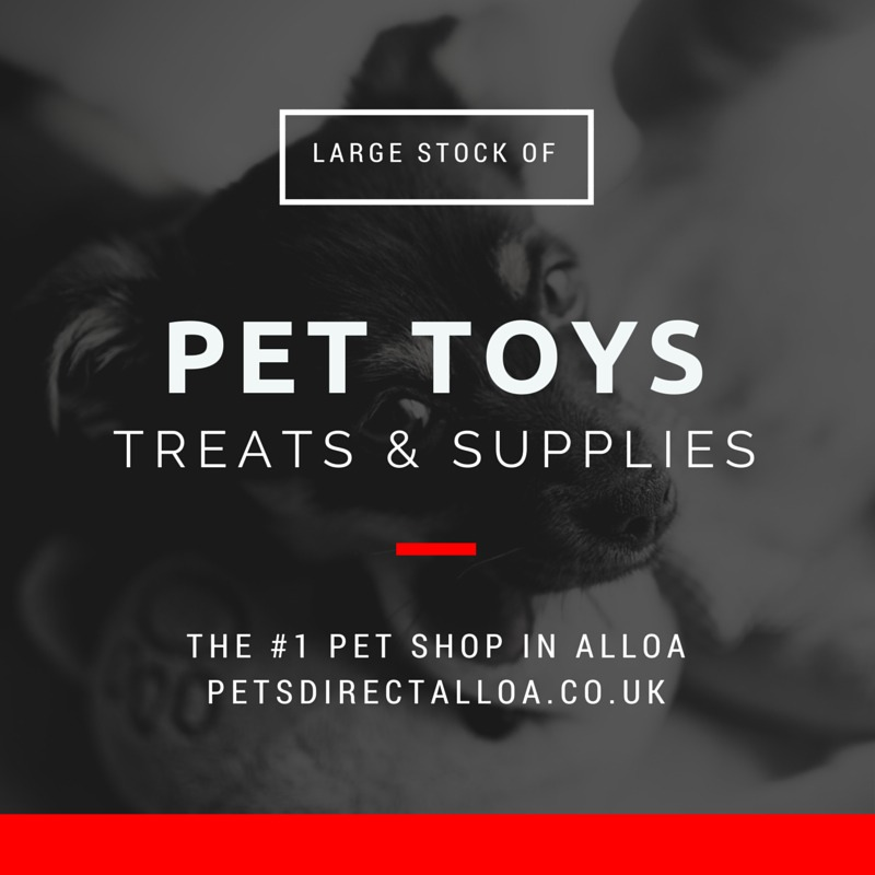 dog-pet-food-treats-toys-supplies-alloa-falkirk-stirling-clackmannanshire.jpg