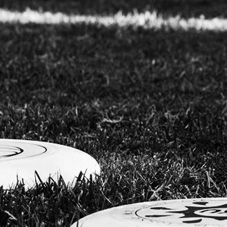discs on field.jpg