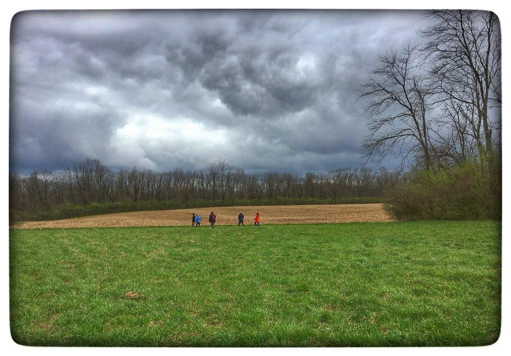 Agraria field.jpg