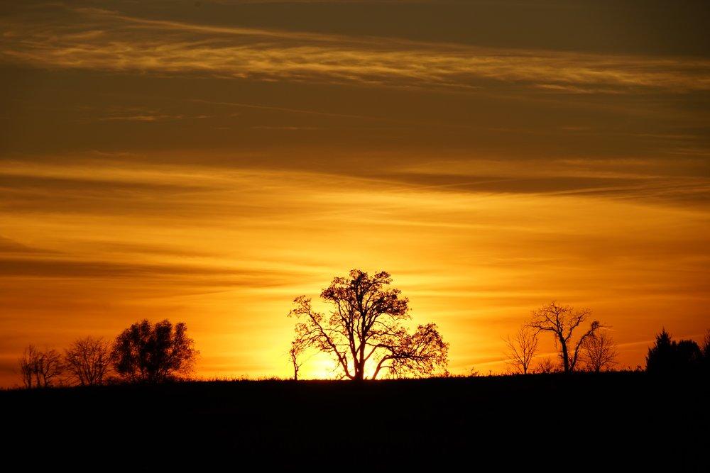 Sunset over Agraria-2 even bigger.jpg