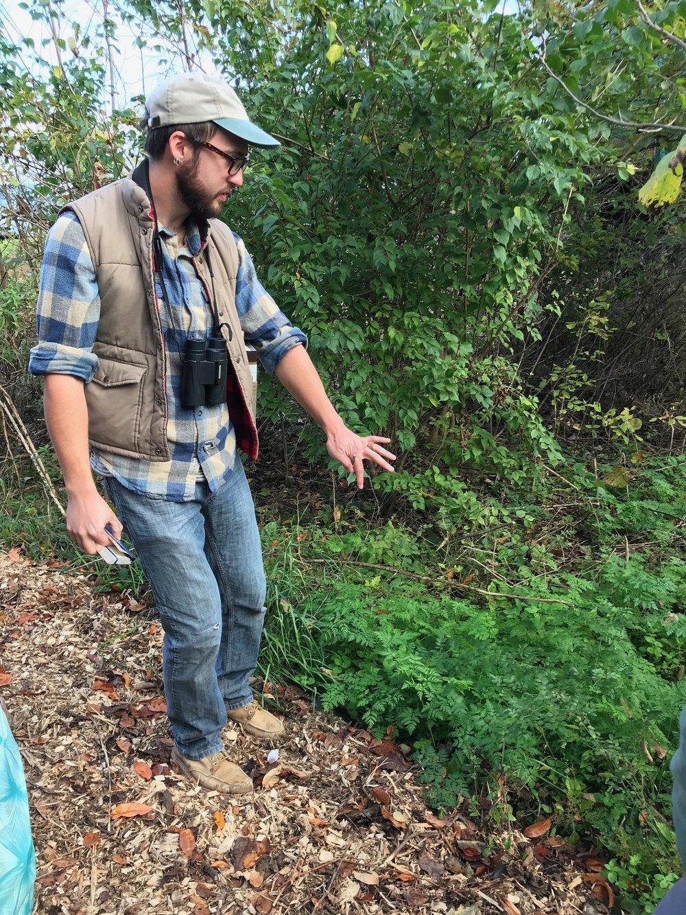 Tree identification walk-GAbby smaller.jpg