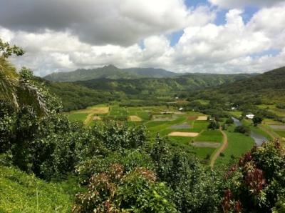 hawaii-1531914_960_720.jpg