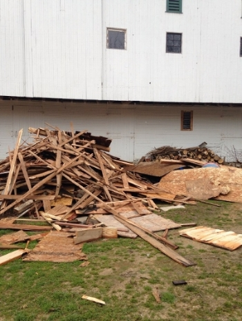 Wood behind barn smaller.jpg