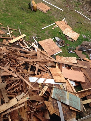 Wood behind barn1 smaller.jpg