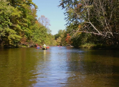 Pere_Marquette_River_in_Autumn_Manistee_National_Forest.JPG