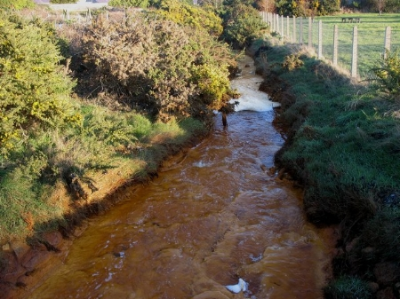 Polluted_stream_flowing_through_the_Lon_Goch_Recreation_Ground_-_geograph.org.uk_-_1169788.jpg