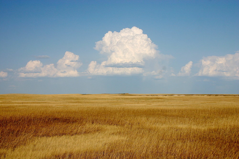 Cumulus_Clouds_over_Yellow_Prairie2.jpg