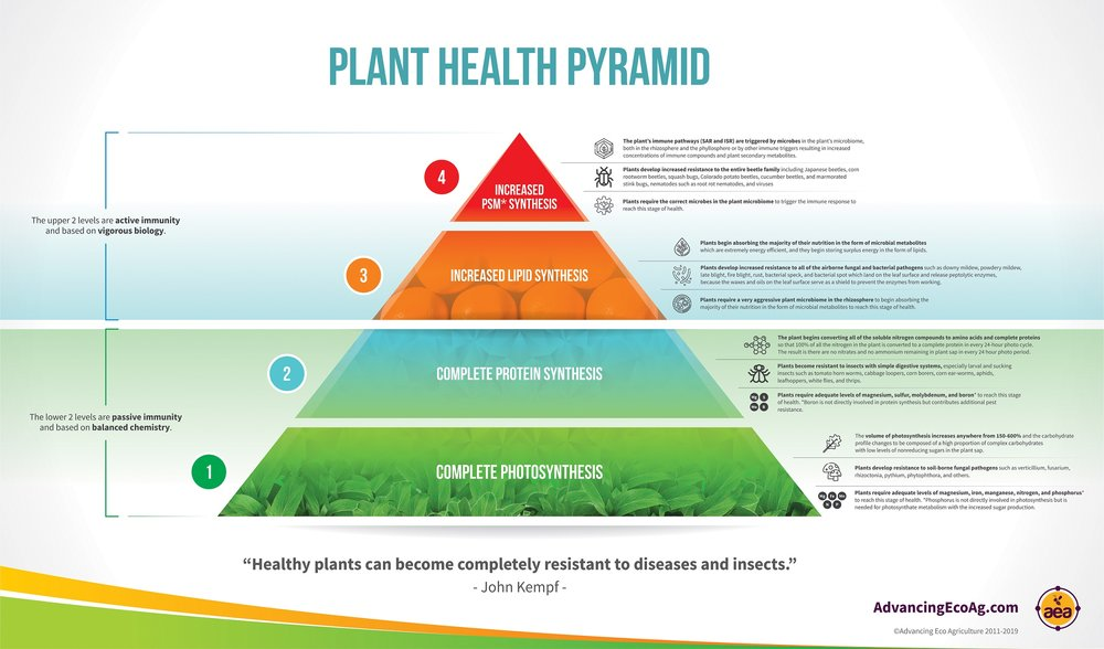 smaller Plant Health Pyramid Complete Infographic.jpg