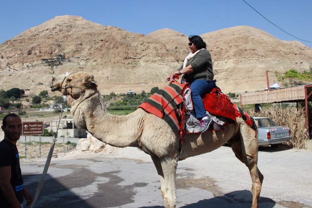 Join us on an  Amazing Holy Land Tour  with Good Shepherd Travel